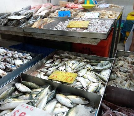Geylang Serai Wet Market and Joo Chiat Road Tour